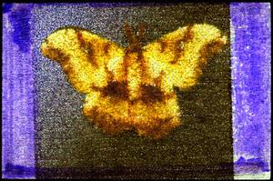 Mothhblog